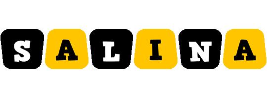 Salina boots logo