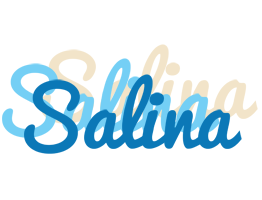 Salina breeze logo