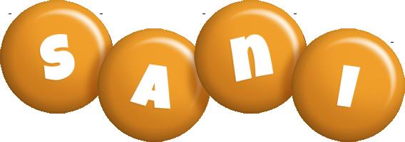 Sani candy-orange logo