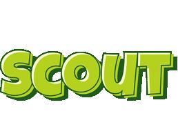 Scout summer logo