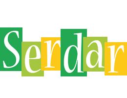 Serdar lemonade logo