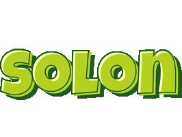 Solon summer logo