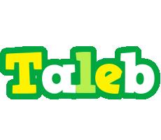 Taleb soccer logo