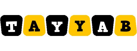 Tayyab boots logo