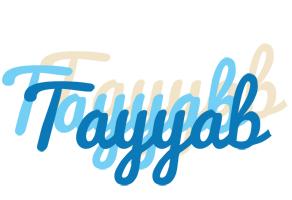 Tayyab breeze logo