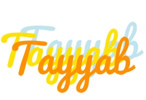 Tayyab energy logo