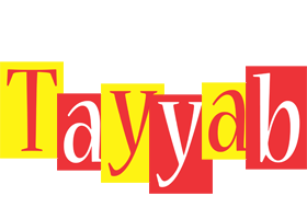 Tayyab errors logo