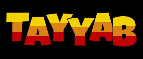 Tayyab jungle logo
