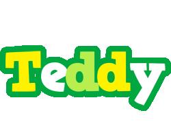 Teddy soccer logo