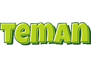 Teman summer logo