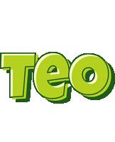 Teo summer logo