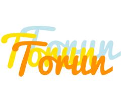 Torun energy logo