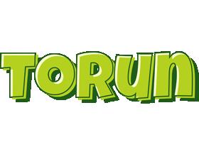 Torun summer logo