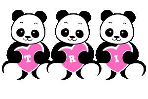 Tri love-panda logo