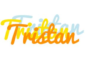 Tristan energy logo