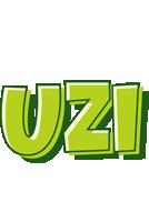 Uzi summer logo