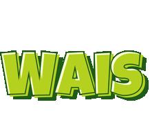 Wais summer logo