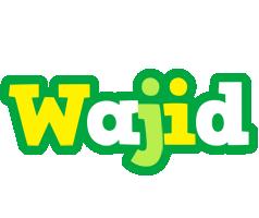 Wajid soccer logo