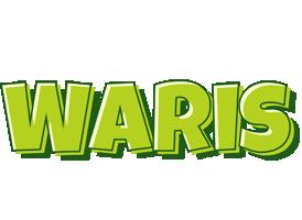 Waris summer logo
