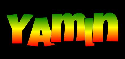 Yamin mango logo