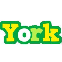 York soccer logo