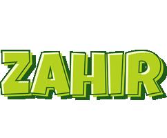 Zahir summer logo