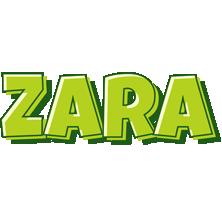 Zara summer logo
