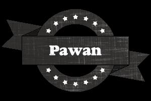 pawan grunge logo